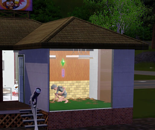 4 options for Sims 3 indoor gardening | Sim 2 Sim